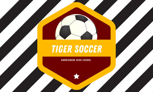 Goals and Ambitions: The 2020 Soccer Season