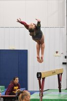 Striving for Greatness: HHS Gymnastics Team